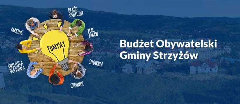 głosowanie na projekty z budżetu obywatelskiego